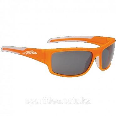 Купить очки Alpina Testido