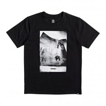 Купить футболку мужскую DC Shoes Tiago Switch FL
