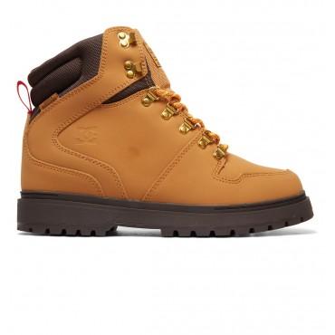 Ботинки мужские DC Shoes Peary TR