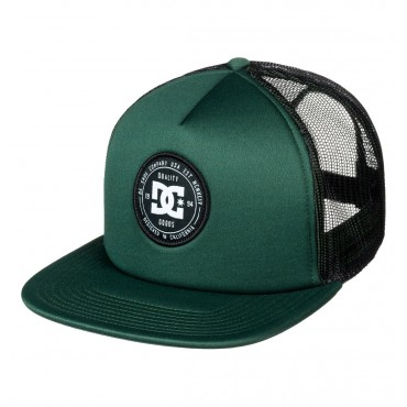 Кепка Dc Shoes Harleson