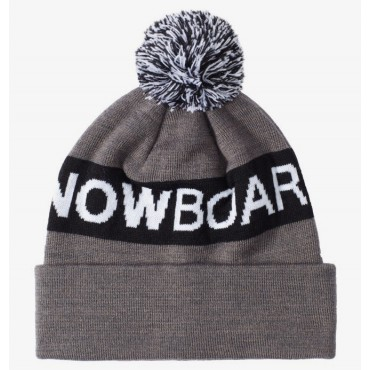 Шапка DC Shoes Chester Beanie  Hdwr