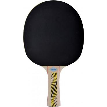 Ракетка для настольного тенниса Donic Schildkrot Legends 500