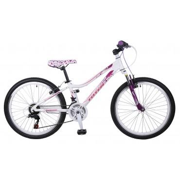 Детский велосипед Totem Angle 24 2016