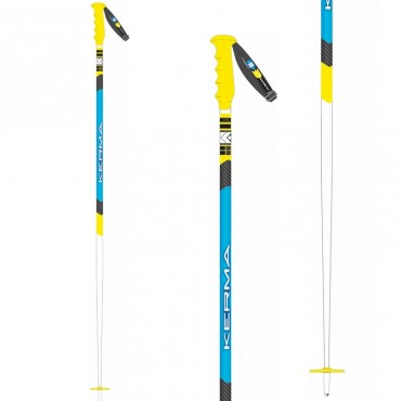 Лыжные палки Dynastar Race SL Sr