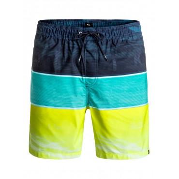 Шорты пляжные мужские Quiksilver Word Waves 17